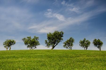 谈施工现场环境保护监理的实施措施